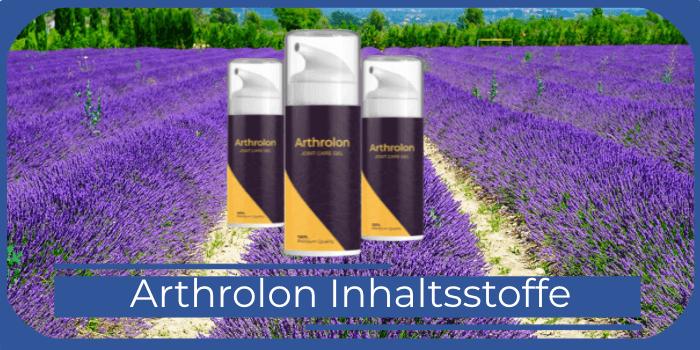 Arthrolon Inhaltsstoffe
