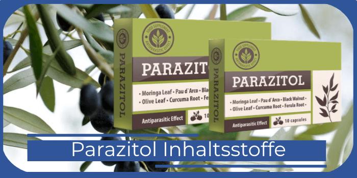 Parazitol Inhaltsstoffe Bestandteile