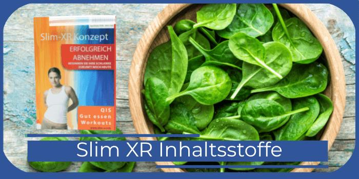 Slim XR Inhaltsstoffe
