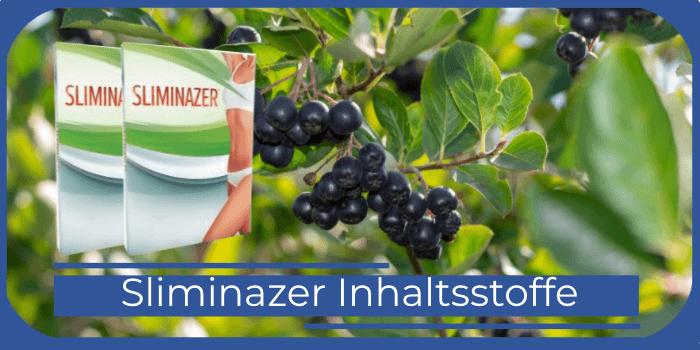 Sliminazer Inhaltsstoffe